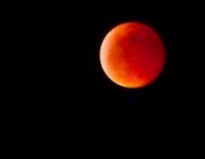 Luna Rossa, l'eclissi vista dalla Valdichiana: la foto