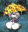 Piovecolsole