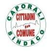 Castiglion Fiorentino, Cittadini in Comune: