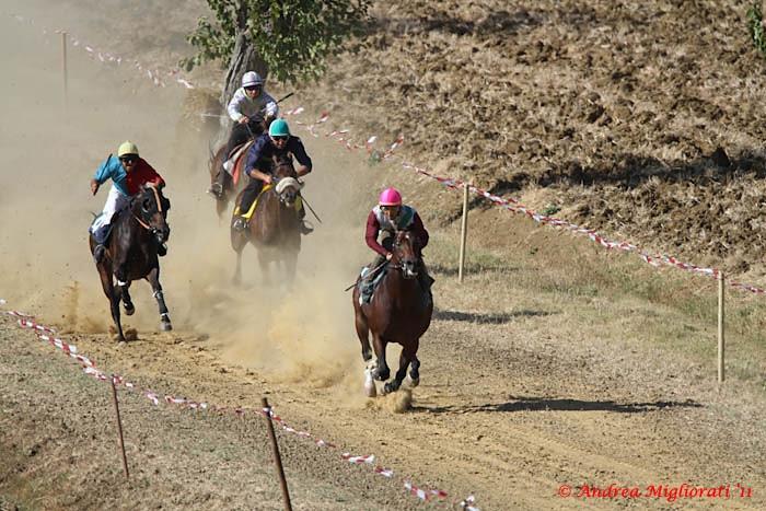 Creti, le foto delle Corse dei Cavalli al galoppo