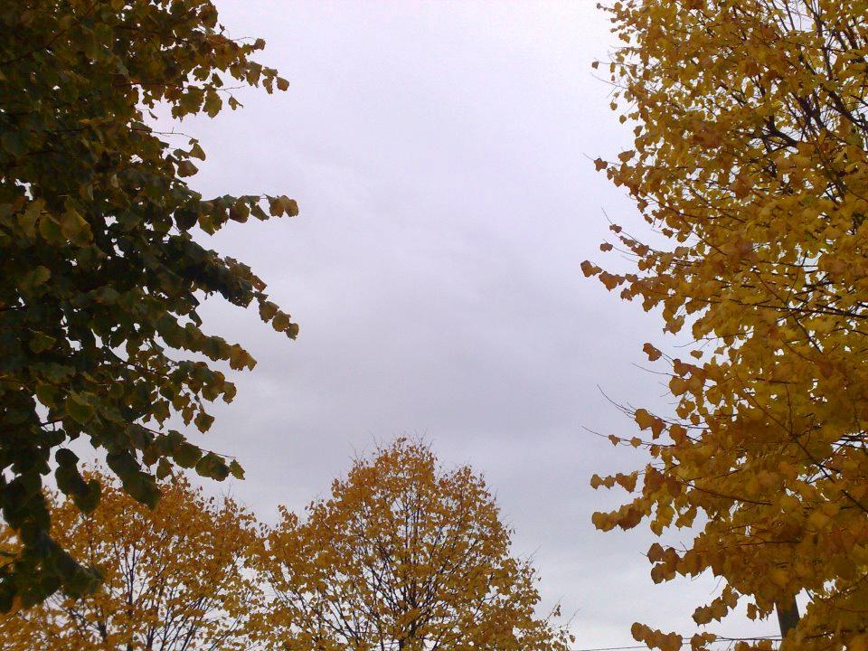 Situazione meteo in Valdichiana