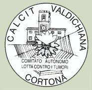 Cena della Soldarietà 2011, Calcit a Fratta di Cortona