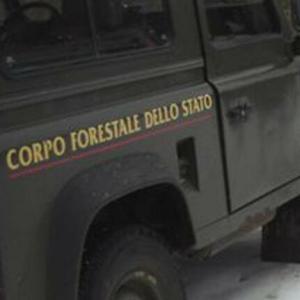 Foiano della Chiana: sequestrati centri di raccolta abusiva di rame, 5 denunce