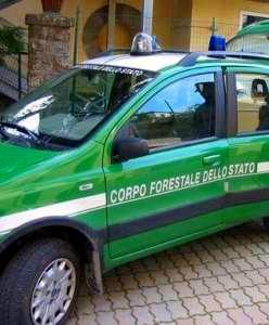 Sportello della Forestale a Castiglion Fiorentino