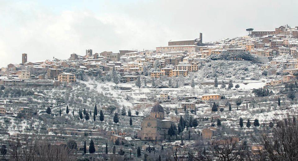 Una passeggiata fra la neve