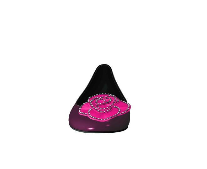 1_Shoes_of_Prey_Ballerine