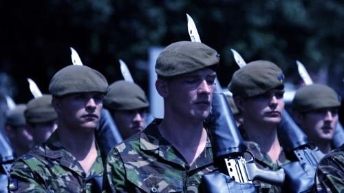 A proposito di parate militari