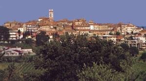 Foiano: le biomasse di Renzino arrivano in Parlamento