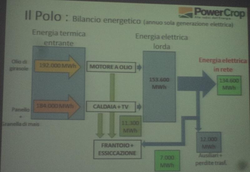 Centrale a biomasse, ecco i dettagli del nuovo progetto