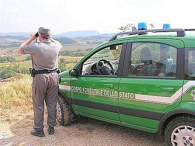 Forestale, Castiglion Fiorentino passa al Comando di Cortona