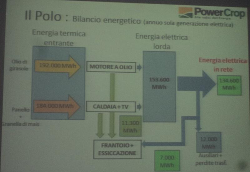 Centrale a biomasse, comitato d'inchiesta sul progetto Powercrop