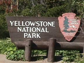 Riapertura delle entrate sud ed est di Yellowstone National Park