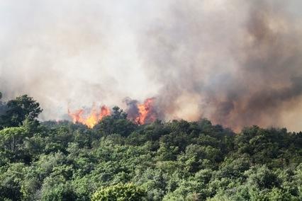 Incendio a Tavarnelle domato dai Vigili del Fuoco. Le foto