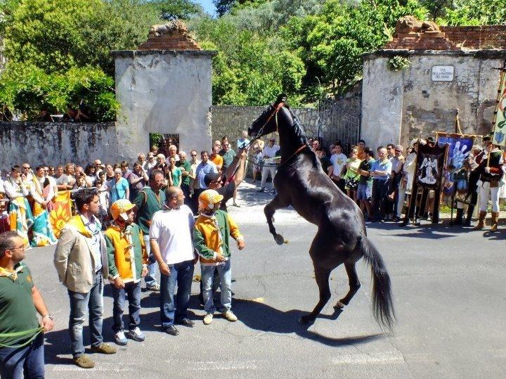 Svolta nel Palio, Porta Fiorentina ha un cavallo di contrada