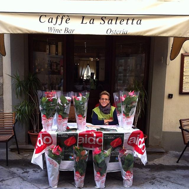 Aido: successo per la giornata nazionale a Cortona