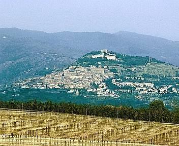 Rifiuti, novità a Cortona: al via la riqualificazione dell'area Biricocco
