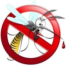 Rischio zanzara-tigre, una sollecitazione alle amministrazioni comunali e ai cittadini in vista dell'estate