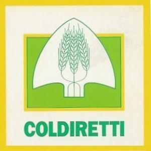 Grandine, danni enormi in Valdichiana, l'allarme di Coldiretti