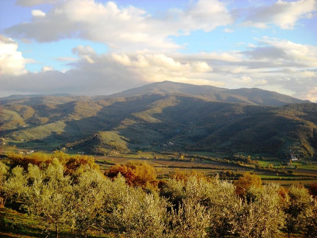 Ferragosto e la montagna cortonese, abbandonata