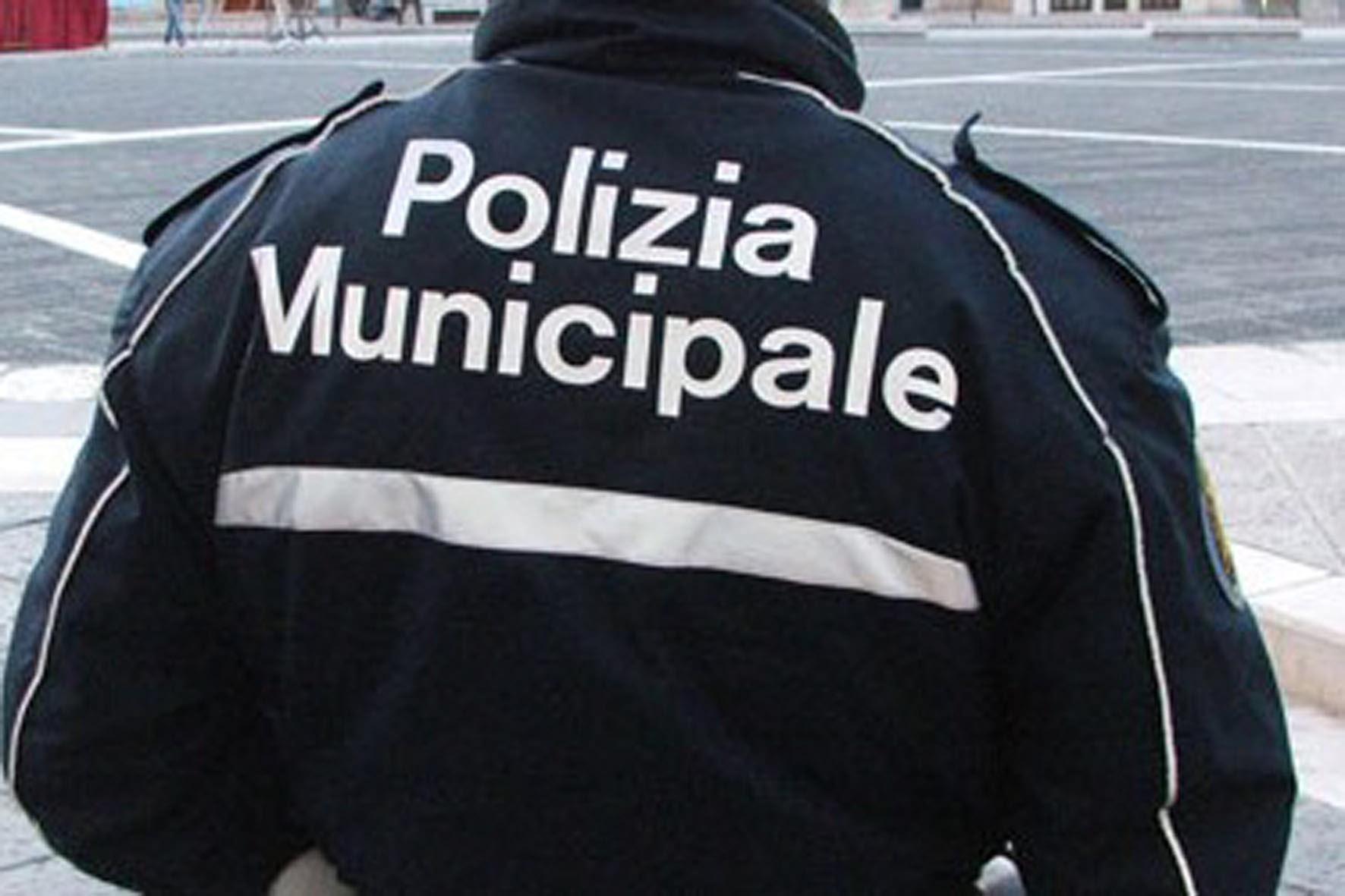Polizia Municipale di Cortona: attività dell'anno 2014