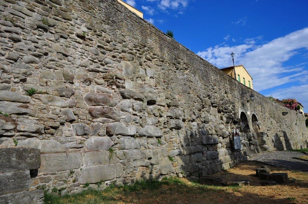 Cortona e il suo patrimonio ambientale, conferenza nel Salone Mediceo di Palazzo Casali