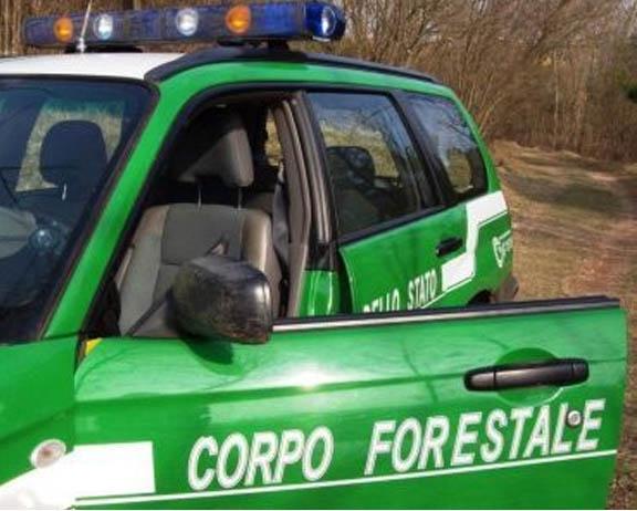 Forestali, una grande risorsa per i territori. Come fare a non disperderla?