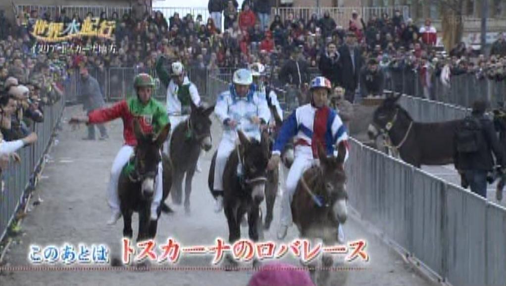 Torrita, il Palio dei Somari in onda sulla Tv giapponese