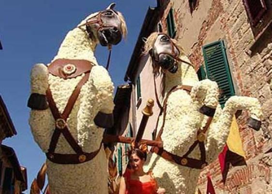 Profumo di Maggiolata, si avvicina l'evento a Lucignano