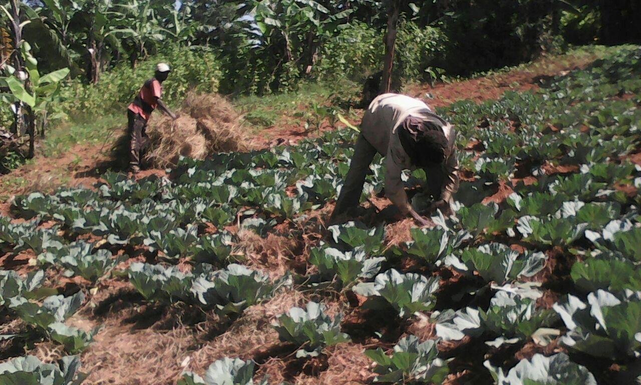 Dalla Valdichiana al Burundi, raccolta fondi al Lago di Montepulciano