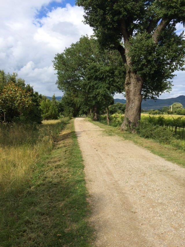 Castiglioni, ripulito il Sentiero dei Mulini con l'aiuto dei cittadini