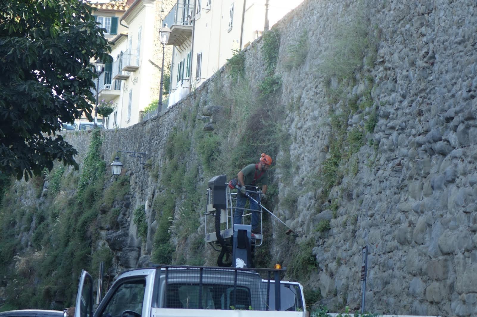 Cortona, in corso la pulizia della cinta muraria