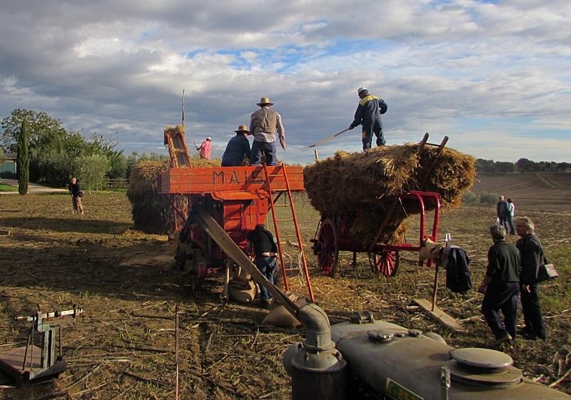 Mostra del Carro Agricolo, il tema di quest'anno è 'La parola data'