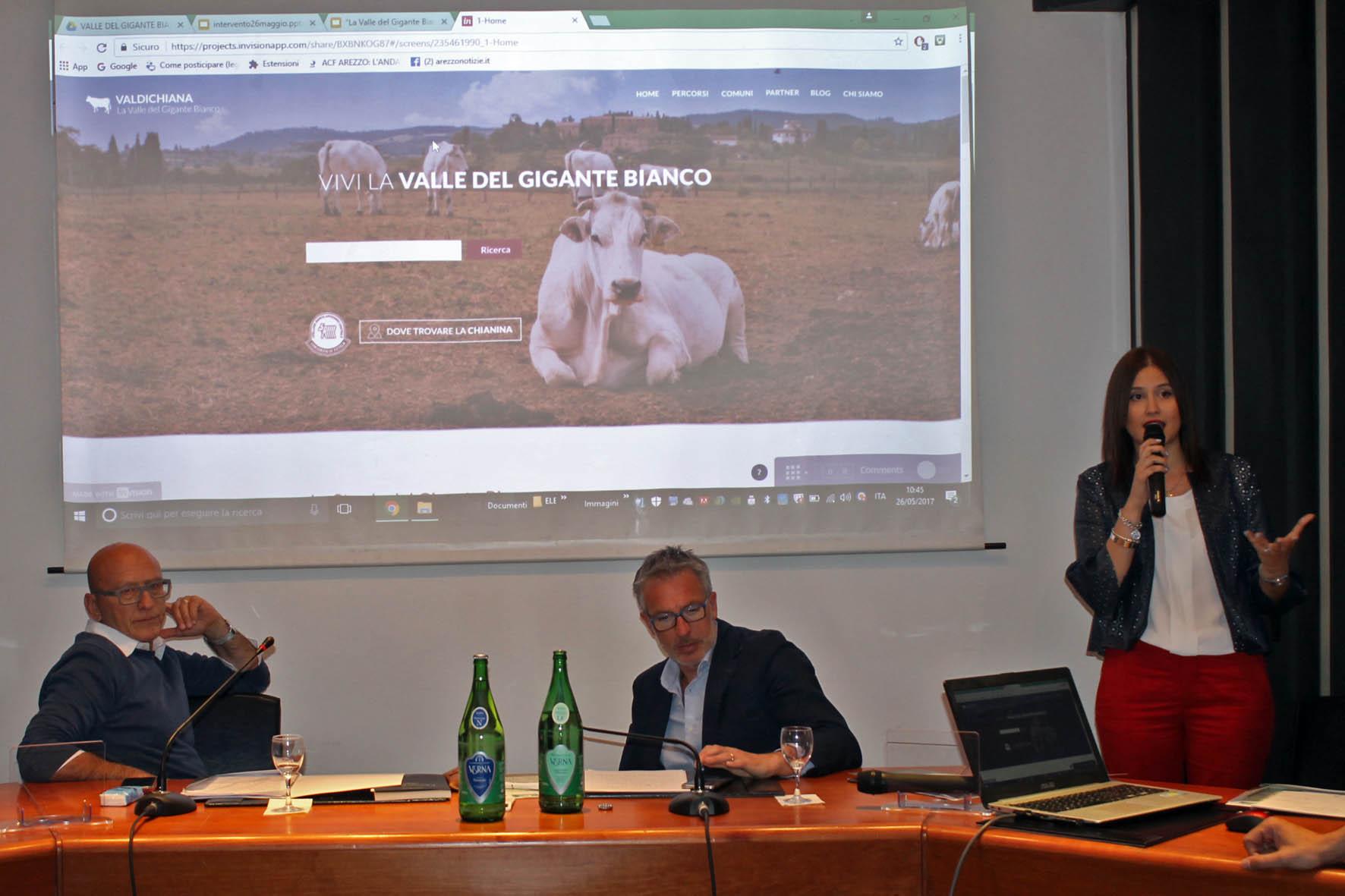 Un portale web per la promozione della Valdichiana e della Chianina
