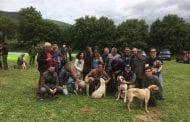 Gara per cani da tartufo a Castiglioni, opportunità di promozione del territorio