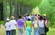 Camminmangiando torna a Lucignano il 18 Giugno