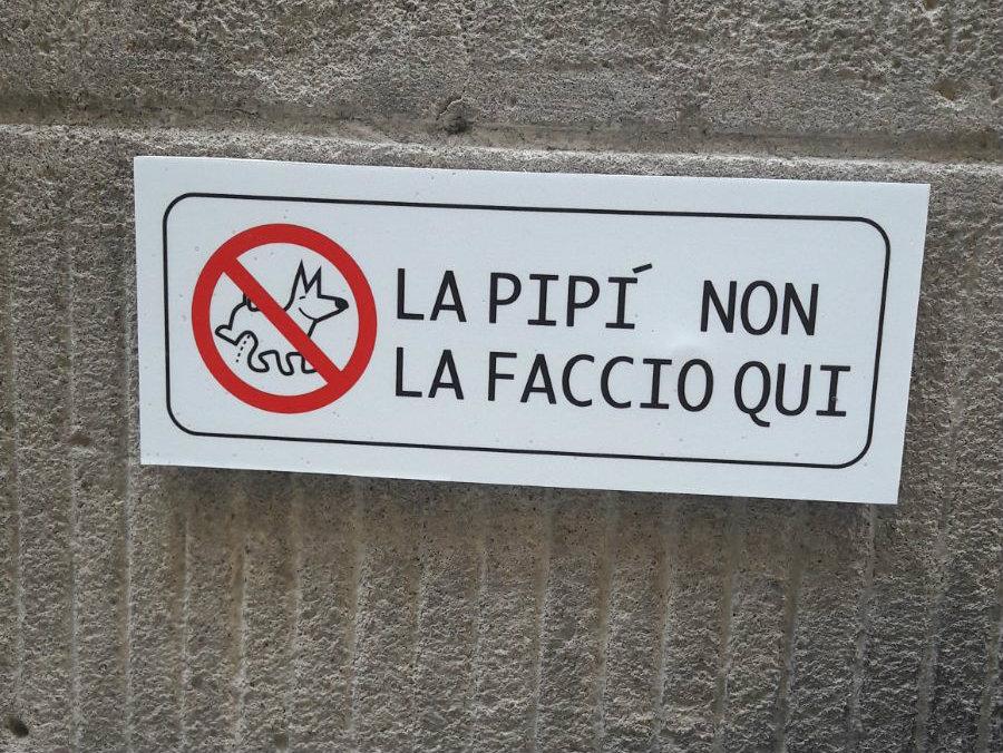 Novità per i padroni di cani a Cortona...