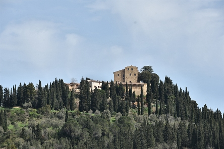 Festival Oltrecolle al Toscana Resort Castelfalfi