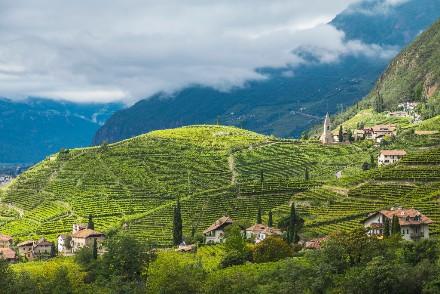 Il St. Magdalener Culinarium 2018 a Bolzano