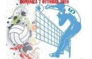 Appuntamento col Torneo Giovanile di Volley
