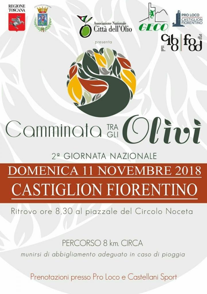 """""""Camminata tra gli Olivi"""" a Castiglion Fiorentino"""