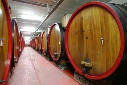 A Badia di Campoleone convegno sulle produzioni vitivinicole aretine