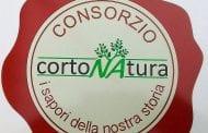 Nasce l'Olio toscano IGP Cortona, sabato la Conferenza Stampa di presentazione