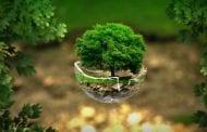 Una nuova coscienza ecologista
