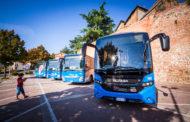 Servizi bus tra Bettolle e Arezzo, in arrivo nuovi collegamenti nei giorni festivi