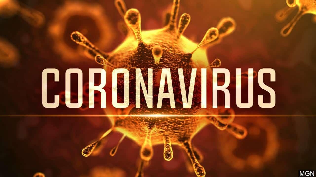 Corona Virus: Incontro divulgativo in San Michele