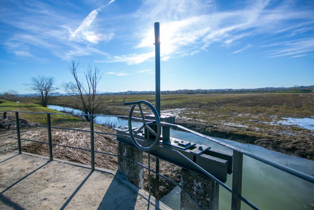 119 ettari del territorio castiglionese inserite nel progetto Natura 2000