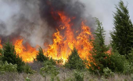 Monte San Savino: rischio incendi, appello alla popolazione. Richiesta alla Regione proroga del divieto di abbruciamento