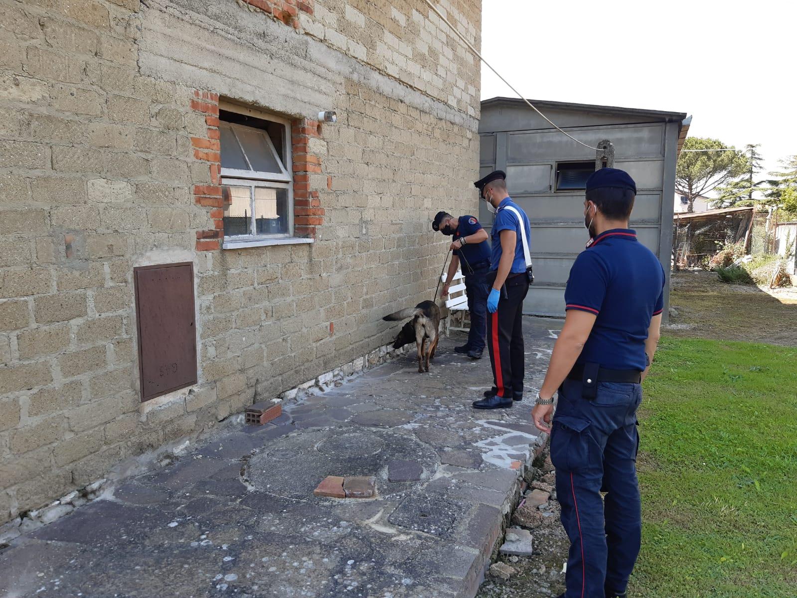 Controlli antidroga dei Carabinieri della Compagnia di Cortona