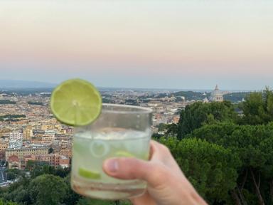 Vista 101 la Lounge panoramica unica a Roma