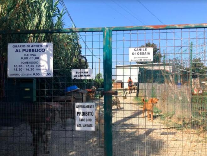 Canile di Ossaia, via ai lavori di adeguamento